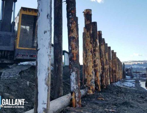 Timber Piling Seawall